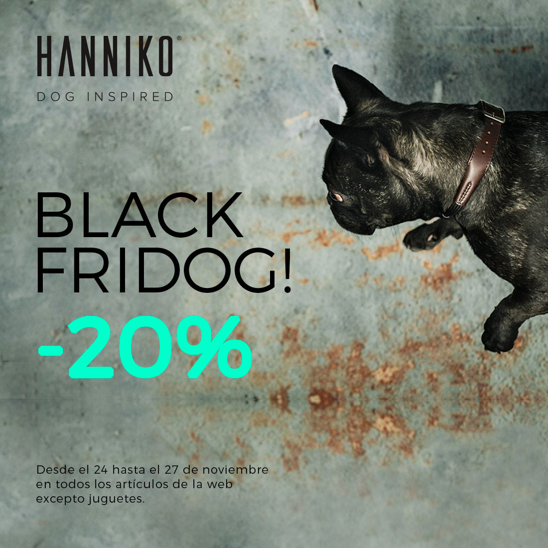 BLACK FRIDOG en HANNIKO DESIGN