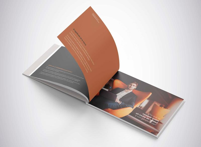 Brandbook de Cariope